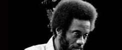 Richard Davis - Bassiste de Jazz