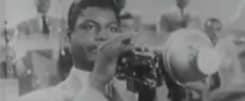 Willie Cook - Trompettiste de Jazz